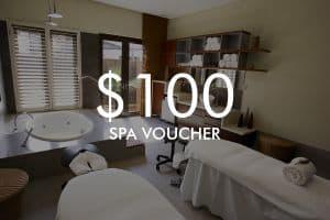 $100 Vie Spa voucher