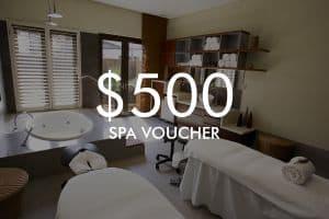 $500 Vie Spa Voucher